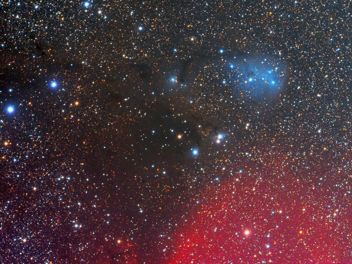 IC 1447