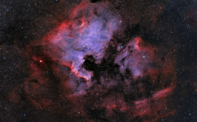 The North America & Pelican Nebulae wide field